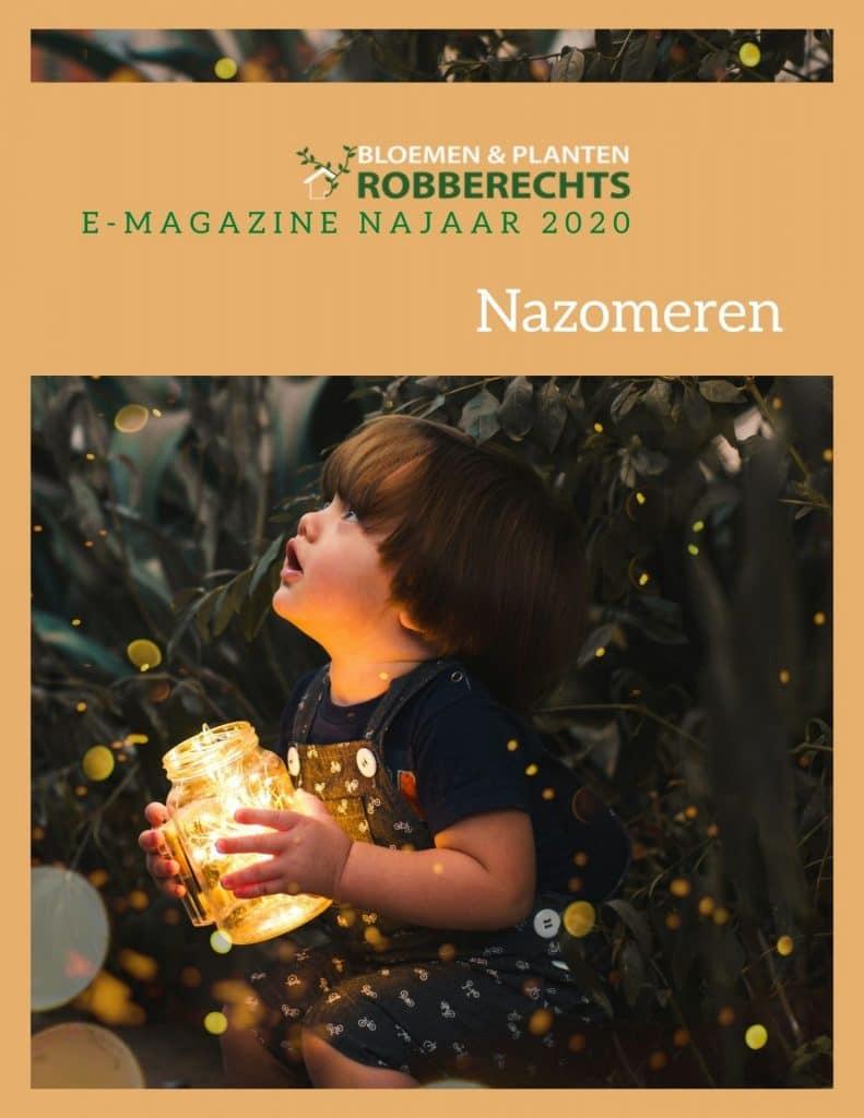 Voorzijde e-magazine